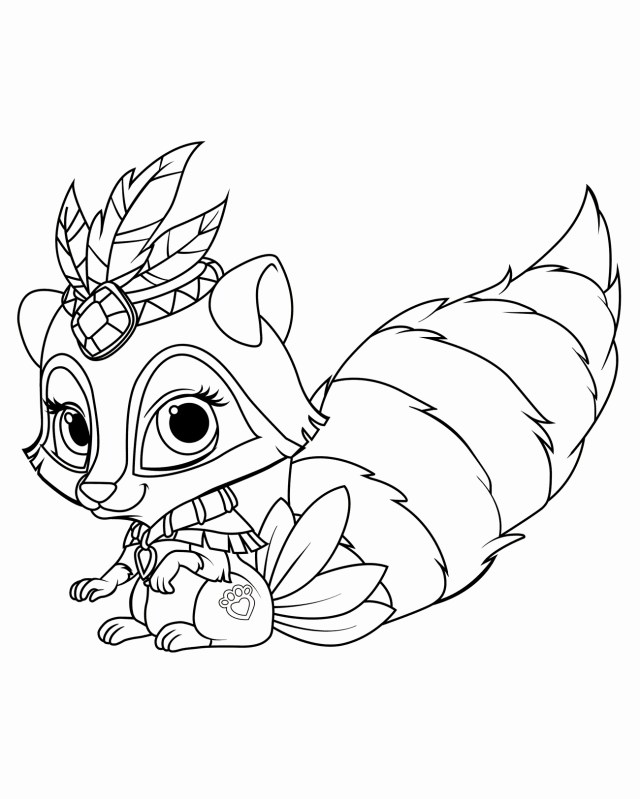 Raccoon Coloring Page Best Of Raccoon Coloring Page Gallery Printable Sheet In