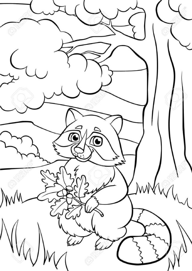 Raccoon Coloring Page Coloring Pages Animals Little Cute Raccoon Holds Oak Twig In