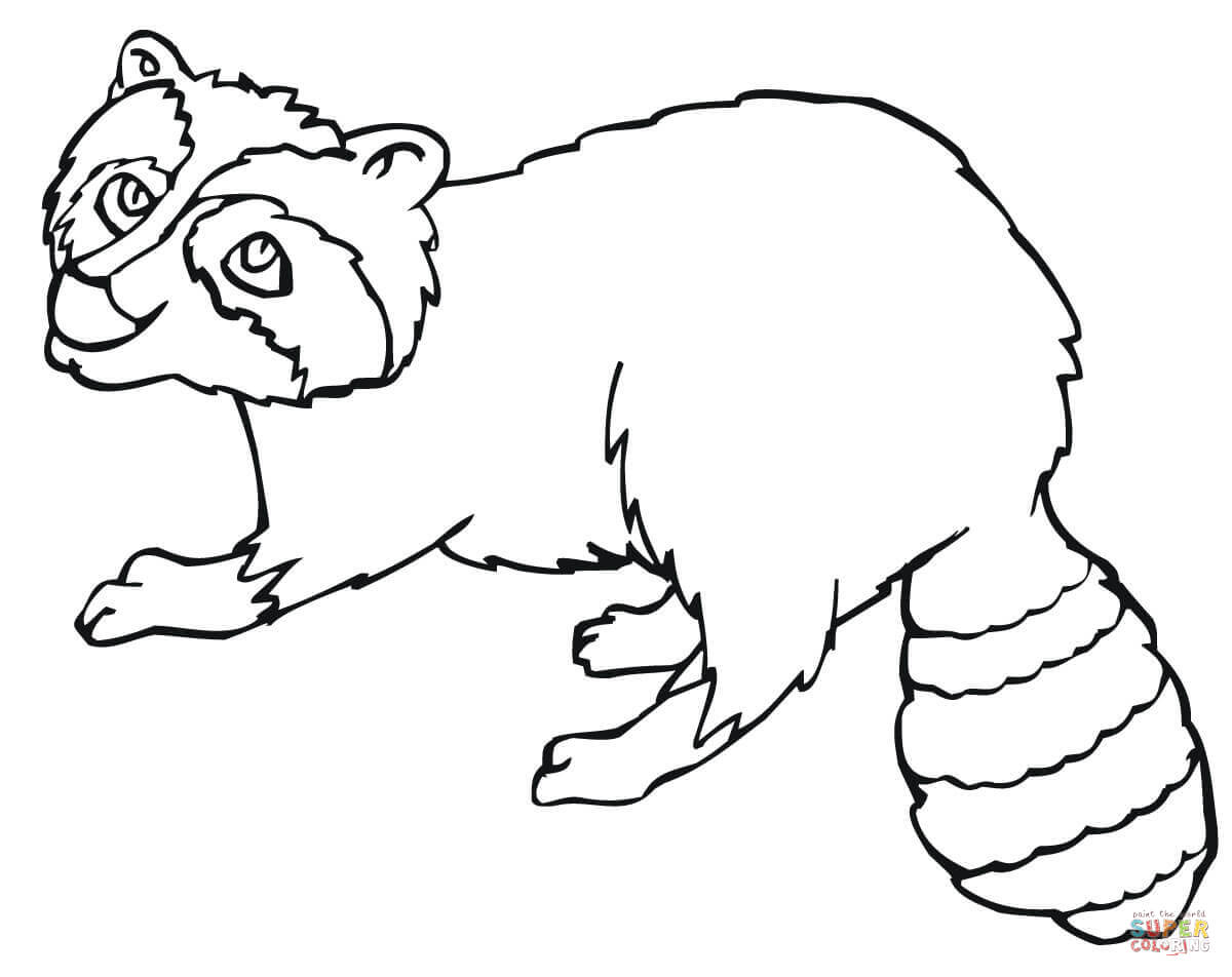Raccoon Coloring Page Raccoons Coloring Pages Free Coloring Pages
