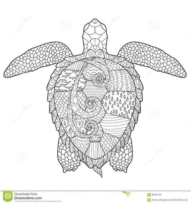 cute-baby-turtle-coloring-pages | Turtle coloring pages, Animal ... | 684x640