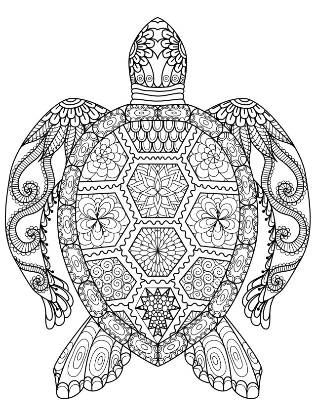 Sea Turtle Coloring Page Sea Turtle Coloring Page For Adults Free Download Adult Pages