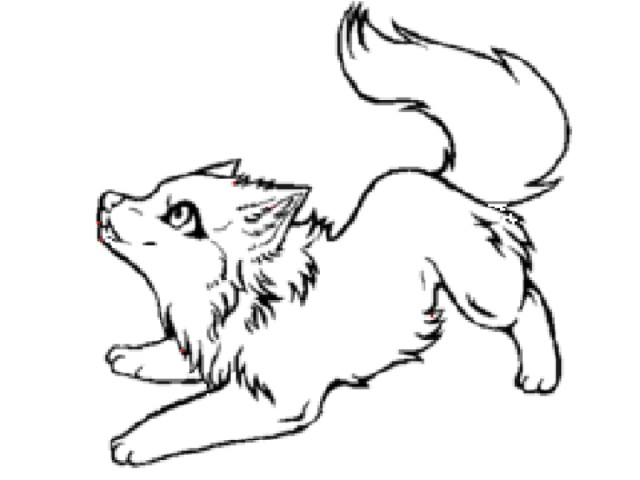 Anime Wolf Coloring Pages Gallery - Whitesbelfast | 480x640