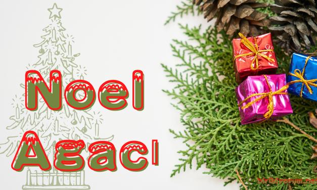 Noel Ağacı: Eski Bir Gelenek
