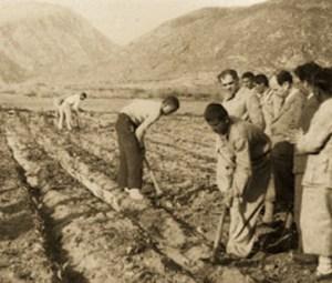 Köy Enstitüleri ve Tarım