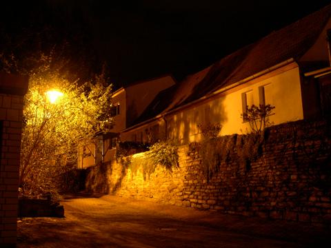 Bild: Am Jüdenkegel in Hettstedt. Nikon E4300.