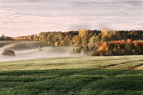 Herbststimmung im Unterharz
