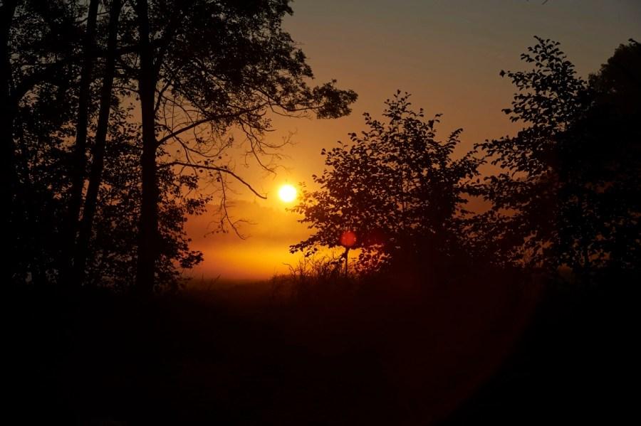 Bild: Sonnenaufgang am Vatteröder Teich bei Mansfeld. NIKON D700 und AF-S NIKKOR 24-120 mm 1:4G ED VR.