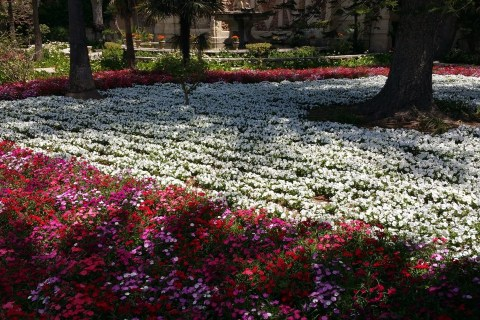 Alternatif Pazar Gezileri: San Anton Gardens, Attard