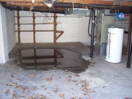 Birmingham, Alabama home with water in basement
