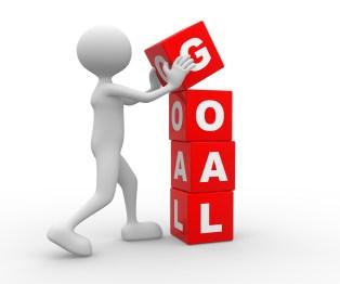 tom_horn_appraisal_goals