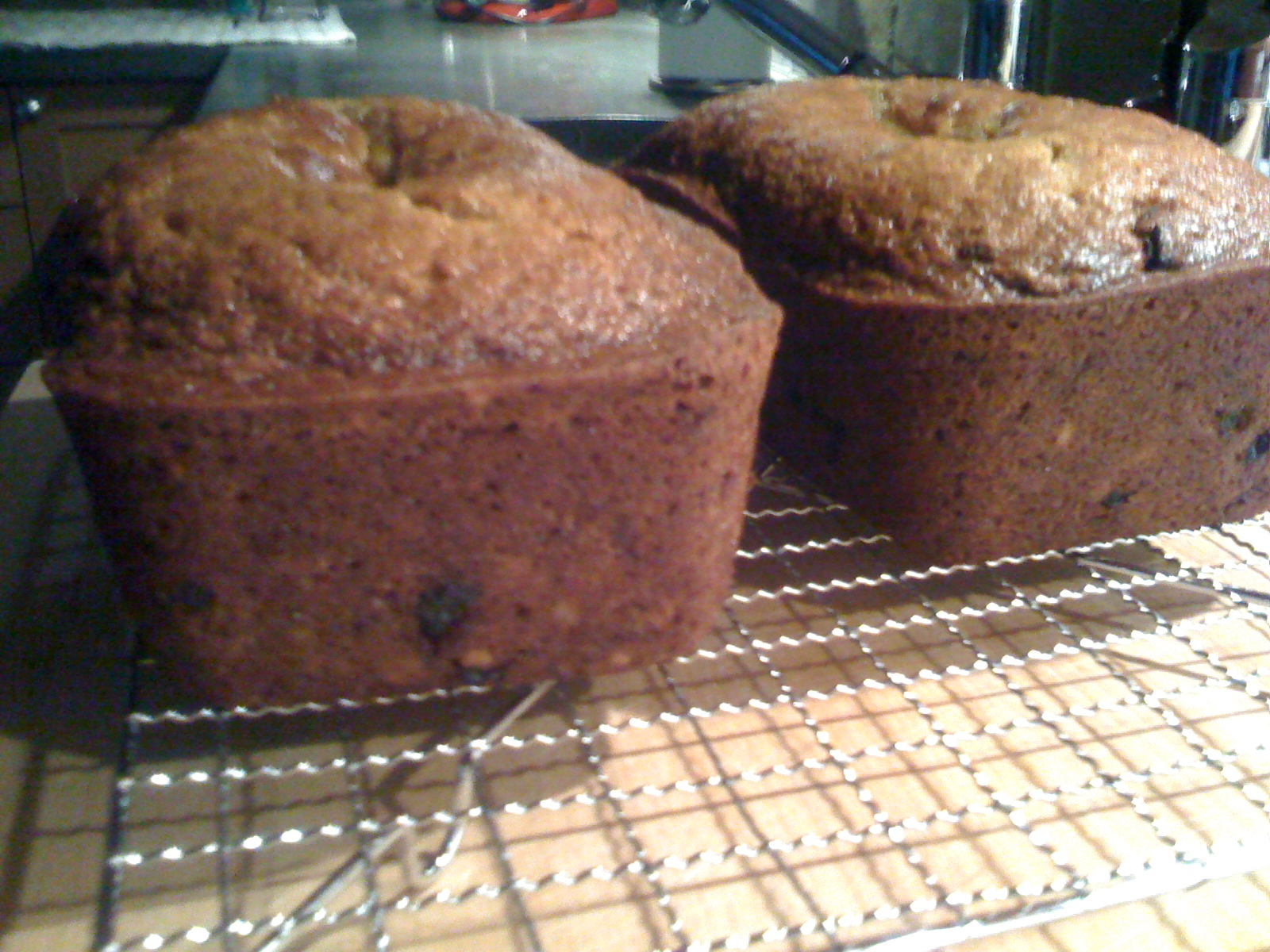 Butternut Squash bread baked
