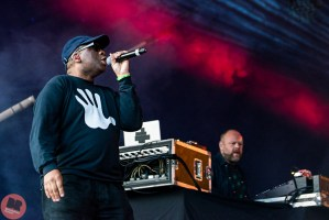 Leftfield - Beyond The Tracks @ Eastside Park 15.09.17 / Denise Wilson - Birmingham Review