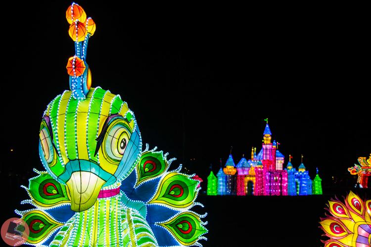 Magic Lantern Festival @ Kings Heath Park / Eleanor Sutcliffe – Birmingham Review
