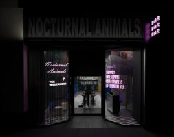 Nocturnal Animals / 20 Bennetts Hill, Birmingham