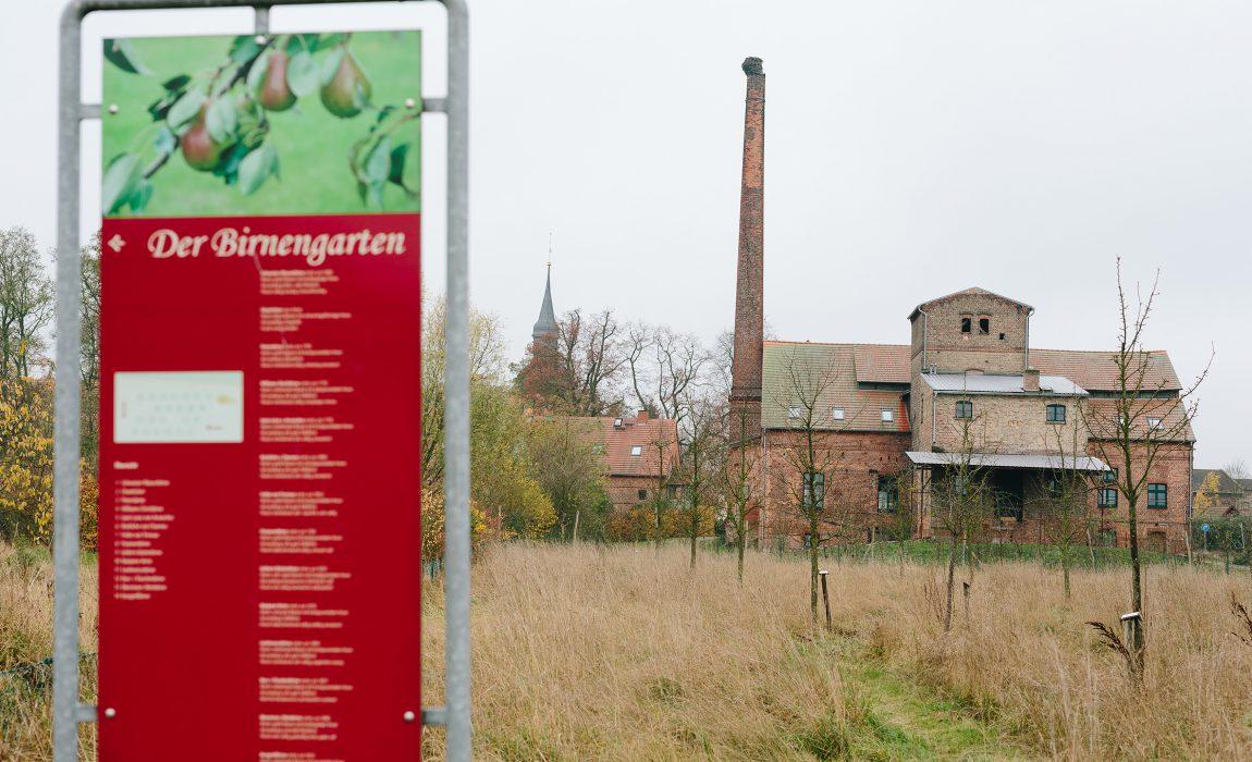 w2-birnengarten-ribbeck