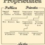birouavocati-formele-de-proprietate