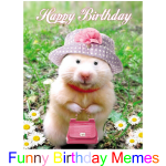 Top Funny Birthday Memes