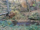 Baybachklamm Traumschleife, brücken k, Wanderung 1.11.15, B+M 2015-11-01 175