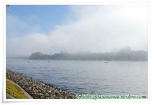 wanderung-eltville-nebel-1