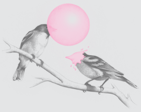 41-1279177236-bg-bubble-gum-bird1