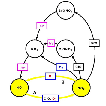 NOx Catalytic Cycles