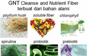 bahan gnt fiber