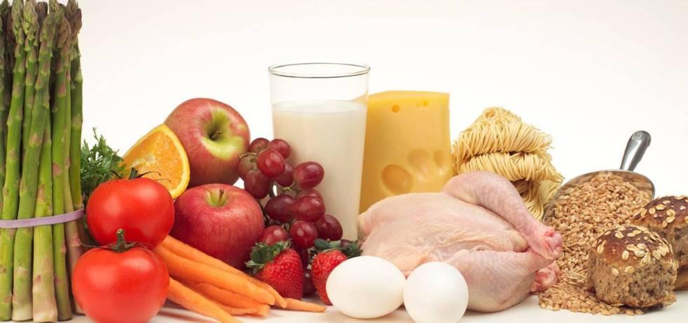 pengertian protein dan macamnya