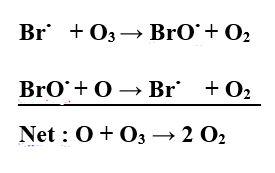 Brox cycle