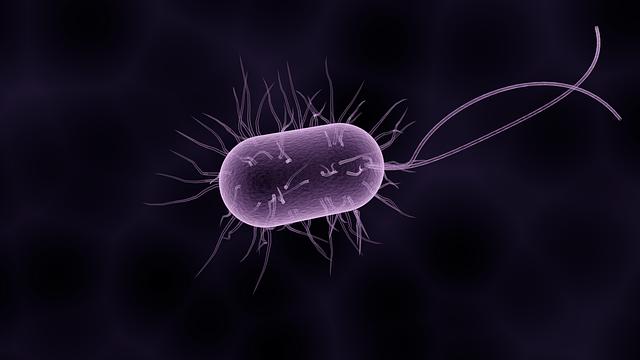 Mengenal Dunia Mikrobiologi