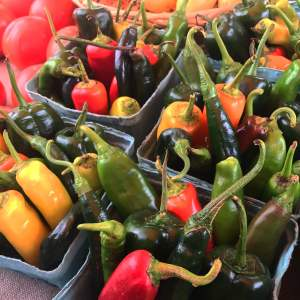 Pepper medley for salsa or soup. Vegetarian | Vegan | Soup | Soup Recipe | Hatch Chili Recipe | 30 Minute Meal