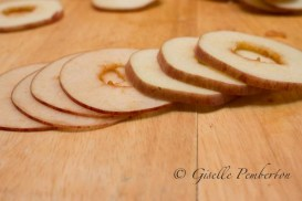 Apple_Chips_MG_2593