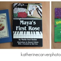 Honoring Biscuit: Special Books