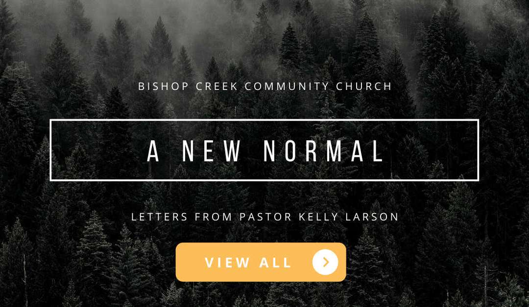 A New Normal – Letters from Pastor Kelly Larson