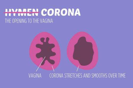 Sexual body parts CORONA HYMEN