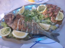 Fish plate (cheap&not bad).