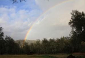 home rainbow