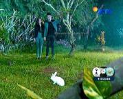 Nayla dan Tristan Jadi Vampir GGS Episode 279-1