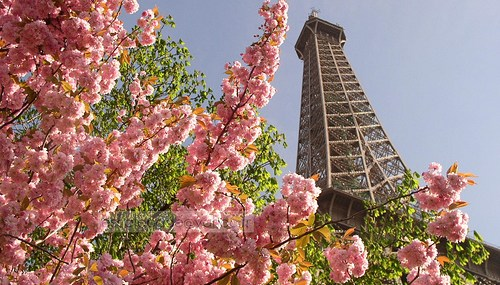 I Love Paris in the Springtime….