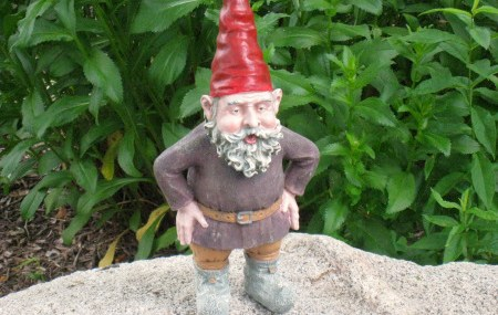 The G-Gnome Project