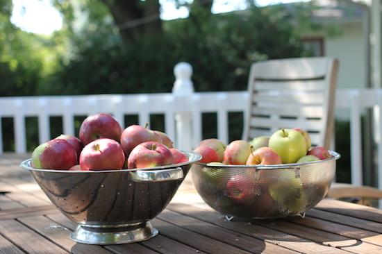 1 Apple Picking 2014 Apple Bowls
