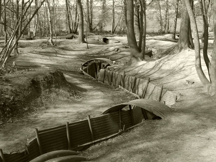 Preserved trenches, Sanctuary Wood, Britain and the First World War