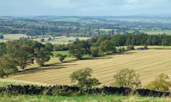 Heavefield, Northumbria