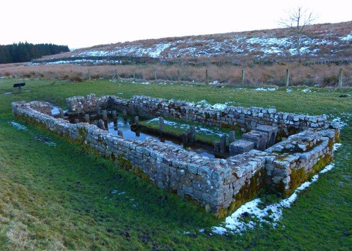 Mithras, Brocolitia, Carrawburgh, Roman, Northumberland