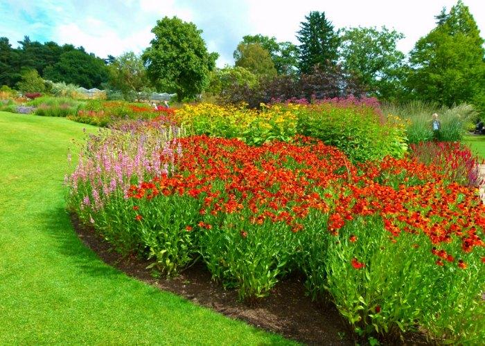 Borders, Harlow Carr, garden, Yorkshire