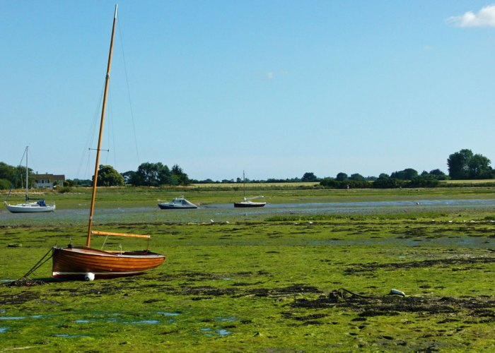 Bosham, harbour, low tide