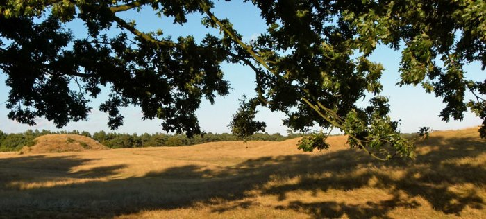 Sutton Hoo, Mound 1