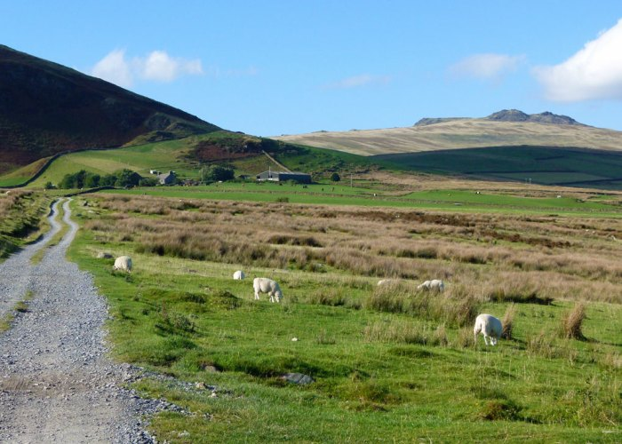 Track to Swinside Farm and Swinside Stone Circle