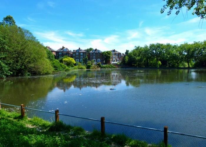 Hampstead Heath, No 2 Pond, visit North London