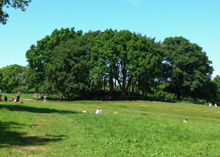 Hampstead Heath, Tumulus, Boadicea's Grave
