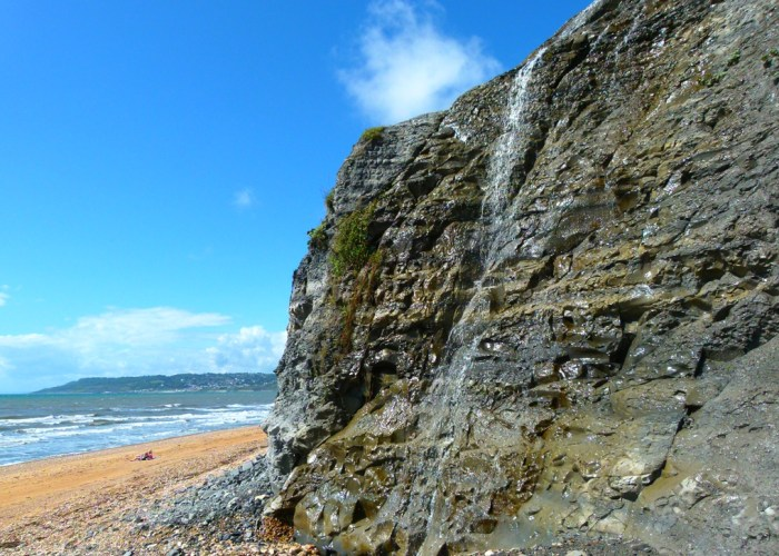 Cliffs, Golden Cap, fossils